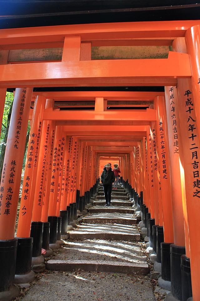 Brány torii tvořící jeden dlouhý průchod