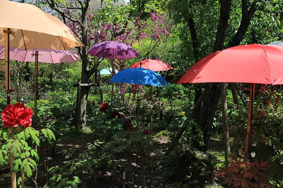 Zahrada Šukkei-en s deštníky